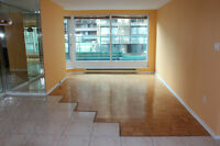 Beautiful 4 1/2 condo for rent or for sale in downtown Montreal