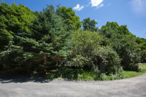 SMRT- Water View Vacant Land with 2.3 Acres