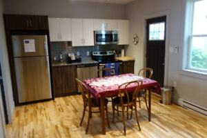 Bright, Clean, One Bedroom, Newly Renovated, North End