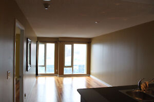 Spacious 1 Bd, Downtown, 34th Floor, All Utilities Incld - May 1