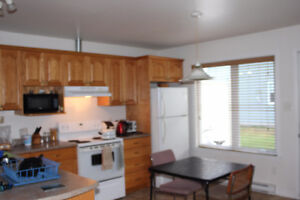 One bedroom for rent in a two bedroom appartement