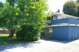 Tsawwassen central 6 bdrm 2 bth whole house (5498 14B Ave)
