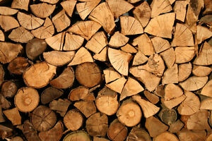 Firewood - Pre-Season Special