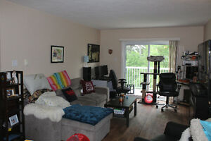 Beautiful 2 Bedroom with 2 Decks, Child & Dog/Cat Friendly. AUG1