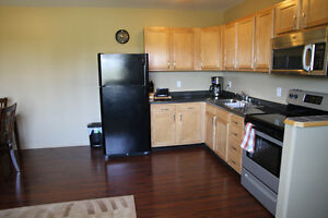 New & Furnished 1 bedroom apartment for rent in Estevan area Regina Regina Area image 4
