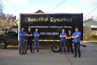 Beautiful Dynamics lawn care and tree removal
