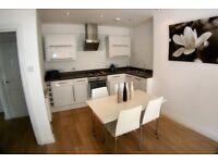 1 bedroom flat in kings norton