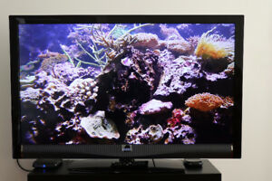 "Sony VIZIO 47"" LED HD-TV"