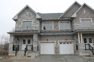 Brand new semi-detached house for rent in Richmond Hill