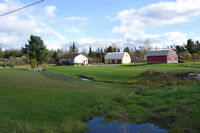 HOBBY FARM WITH 146 ACRES!!  10 km North of Verner