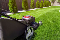 Lawn Mowing $20 & Spring Cleaning Available