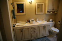 Bathroom Vanity Cabinet, Sinks, Pharmacy, Toilet, and bathtub