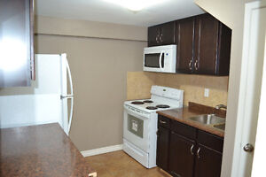 2 Bedroom Basement Apartment in North Oshawa - Separate Entrance