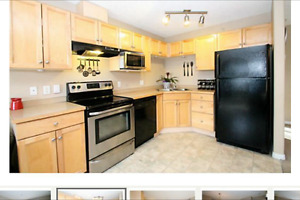 Beautiful 2 Bed 2 Bath Condo For Rent!
