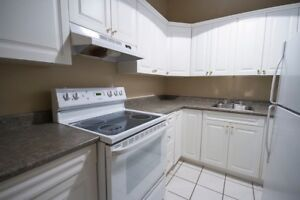 3 Bedroom apartment for sublet May-August