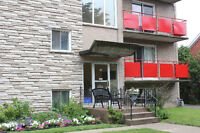 Perfect Location, Quiet Building, Large 1 bedroom from Dec 1