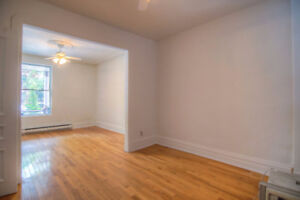 4 1/2 (1 bedroom and 1 den) with a backyard in Little Italy