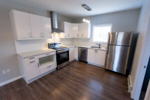 Newly Renovated 1 Bedroom Suite