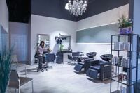 Hairstylist and estheticians