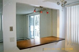 VERY CLEAN QUIET ADULT-ONLY APT. FREE SEPT. RENT