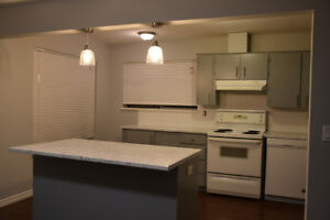 Newly Renovated 3 Bed, 1 Bath Spacious ½ Duplex Rancher Style Ho