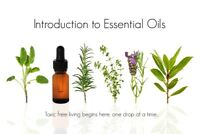 Introduction to Young Living Essential Oils plus Make and Take