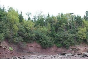 61.5 acres WATERFRONT New Brunswick! For sale/trade! Oceanfront! Kingston Kingston Area image 8