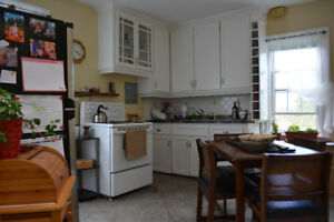 Roommate wanted for downtown 2 bedroom apt starting Sept 1
