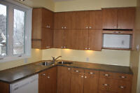 Armoires, comptoir, évier cuisine / Kitchen cabinets and sink