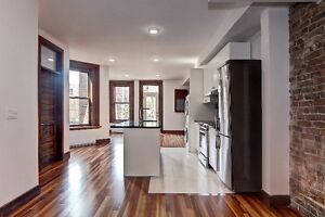 $1700 / 2br - 1000ft2 - Very bright renoved 4 1/2 - St Henri
