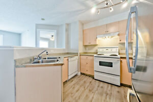 For Rent 2 bed 2 bath + Fireplace