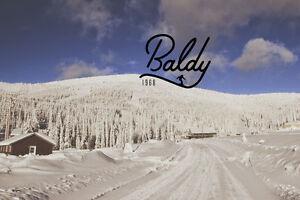 Ski in Ski Out Chalet on Mt Baldy!