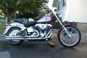 Harley Davidson Softail for Sale - Cheap!