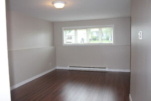 Newly Renovated 1 Bdrm in Mount Pearl
