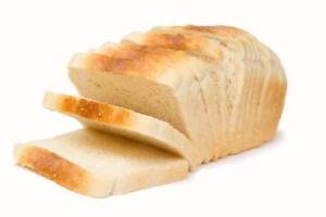 WELL ESTABLISHED Bread Run $85,000 WIWO (Gold Coast) Brisbane South East Preview
