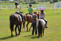 Give the Gift of Riding Lessons!