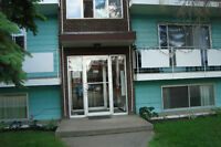 Beverly Heights Apartment - Large, Clean,  1 Bedroom