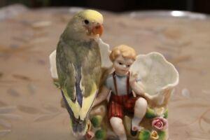 Lovely, super tame white-face pied violet baby lovebird