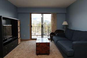 PRICE REDUCED! Quiet 1 Bed Condo With Mountain Views
