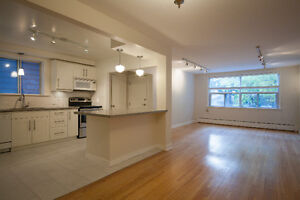 Bright, renovated LARGE 3 bed apt in the heart of the Junction