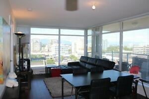 Furnished Two Bedroom High Rise Apartment
