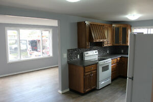 3BR 1BA 2 level house with large fenced in yard, all incl.,