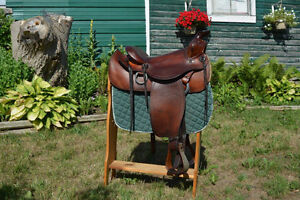 Mint Condition Big Horn to trade for Simcoe Peterborough Peterborough Area image 1