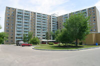 Riverside Plaza - 1 bedroom Apartment for Rent