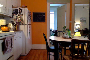 Summer in Montreal! August sublet