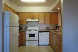 303 Westcourt Place sublet May-August (5 min walk to Waterloo)