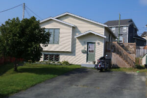 Very Well maintained home