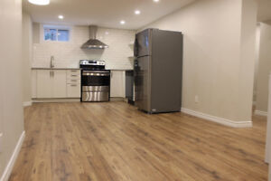 Beautifully renovated 2 Bedroom apartment on the West Mountain!
