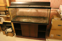 75 Gallon, Light Fixture and Glass Canopy w/ Free Stand