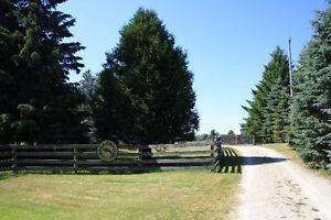 Picturesque Equestrian Center (Horse Farm)